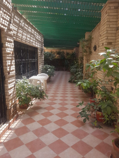 Ground Floors For Rent In Maadi Maadi Sarayat